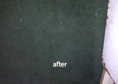 Burlingame-2-after-carpet