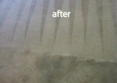 Burlingame-Carpet-Cleaning-Carpet-Cleaning