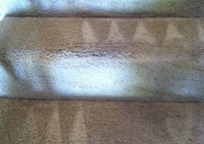 Burlingame-Stairs-Carpet-Cleaning