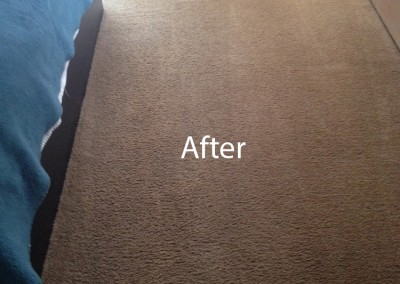 ink stain removal Burlingame-B